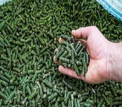 Витаминно-травяная мука в гранулах люцерна весовая 1 кг