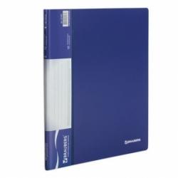 Папка 10 вкладышей BRAUBERG стандарт, синяя