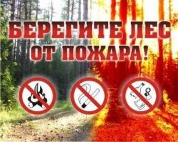 "Аншлаг для леса ""Берегите лес от пожара"" ЛА-12"