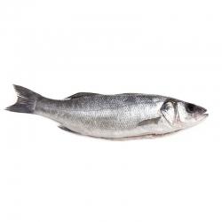 Сибас, 300-400 гр