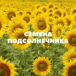 Семена подсолнечника на посев